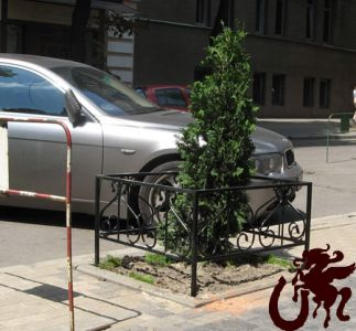Газонное ограждение вокруг дерева